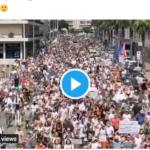 Screen Shot 2021-07-28 at 21.06.54